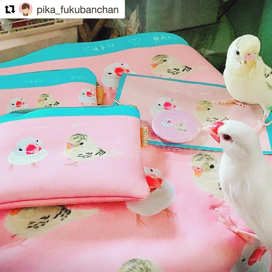 白文鳥&セキセイインコ  BANちゃんFUKUちゃん Famille うちの子グッズ